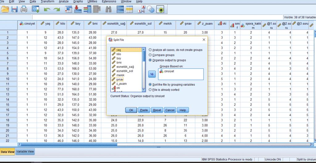 spss veri düzenleme, Split File