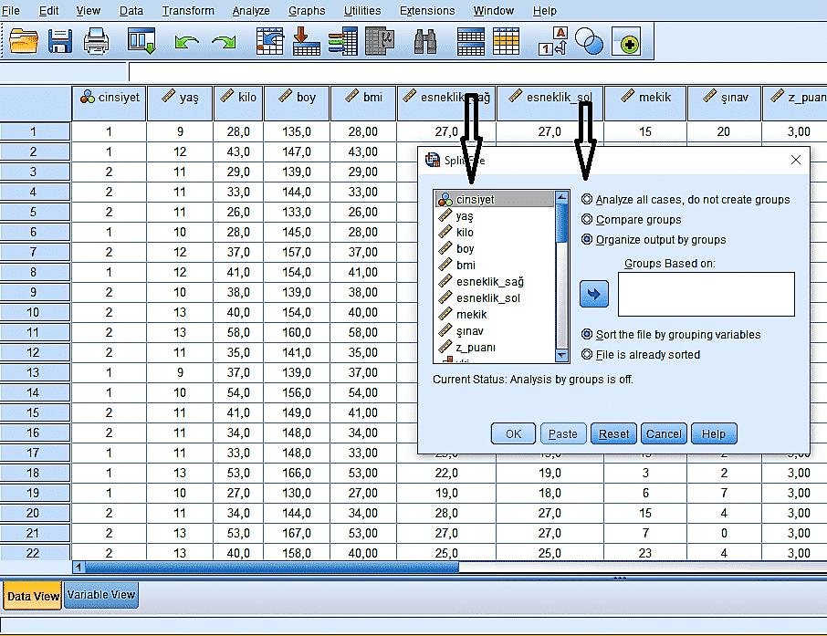 split file komutu