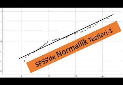 Normallik Testleri-Spss