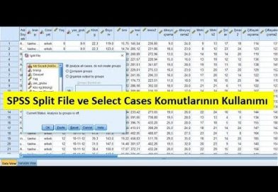 Split File ve Select Cases Komutları