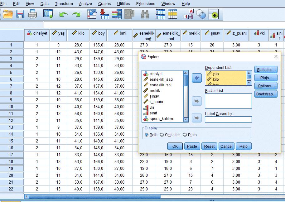 Normallik testi yapılacak verilerin seçilmesi, EXPLORE