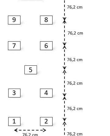 Modifiye Bass Balance Test