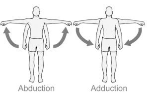 düzlem ve eksene göre Abdüksiyon ve addüksiyon