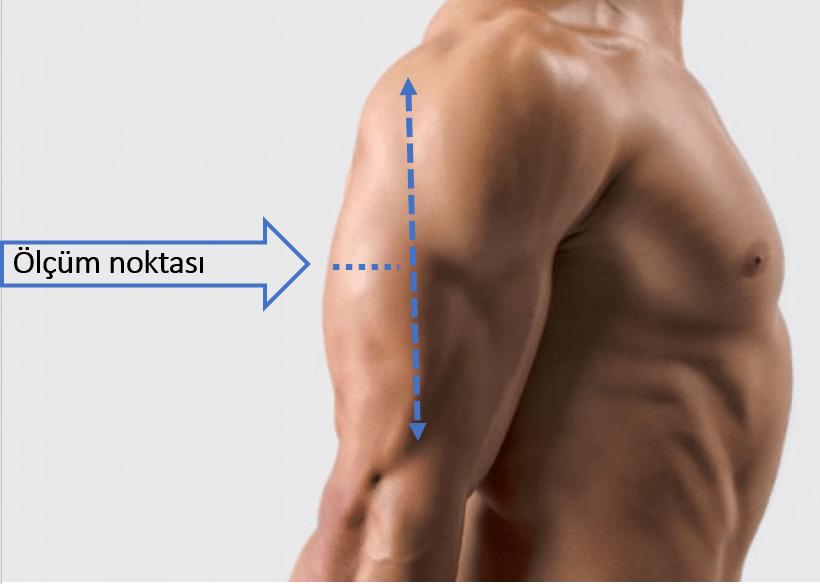 Triceps deri kıvrım kalınlığı ölçümü, somatotip